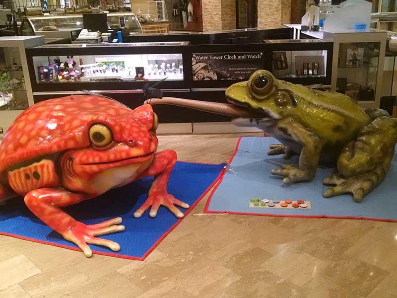 process-Amphibians-at-WTP-21