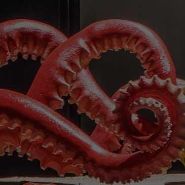 our-work-thumb-shedd-aquarium-octopus